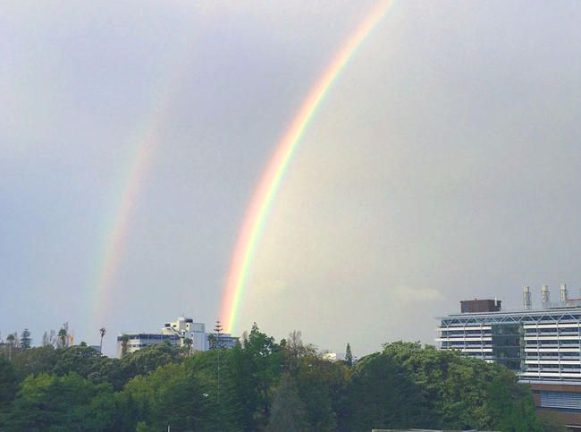 (c)ecube_rainbow04.jpg